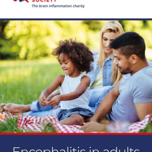 Encephalitis In Adults - A Guide