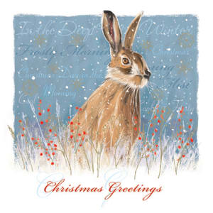 Christmas Card - Hare in Winter